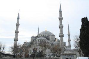 moscheablu