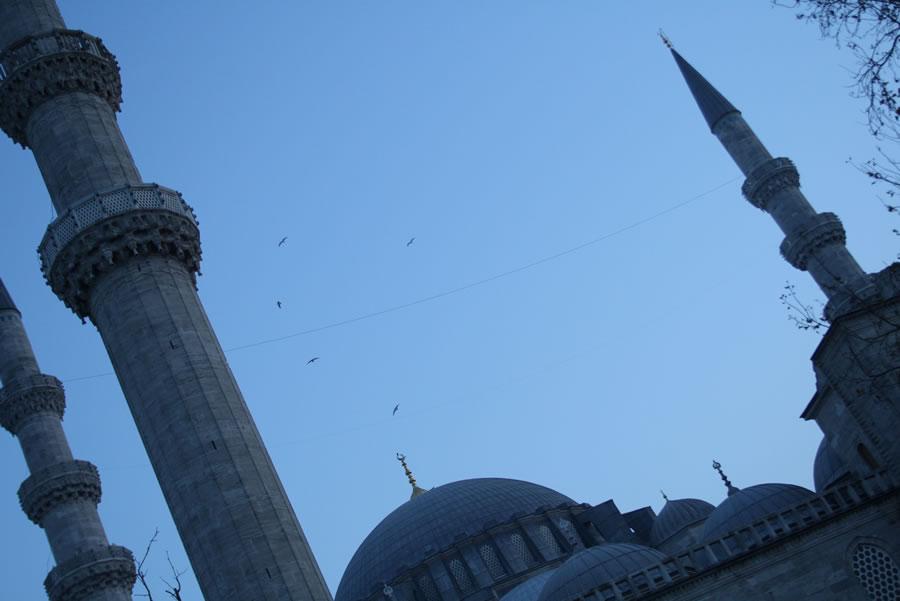 moscheasolimano